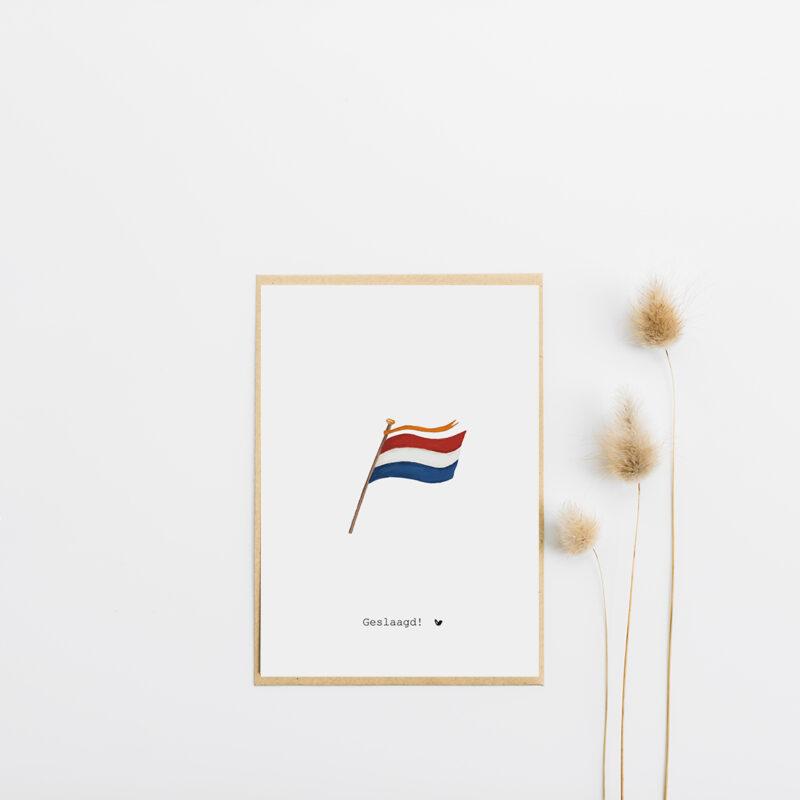 Geslaagd – vlag en wimpel